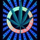 PSYWORK-Schwarzlicht-Stoffposter-Neon-Weed-Leaf-05x07m__59754270_01