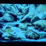 psywork-stoff-poster-stones-schwarzlicht