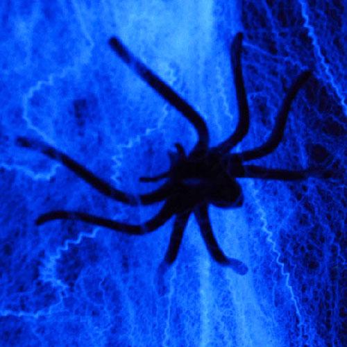 Halloween Party Deko Spiderweb